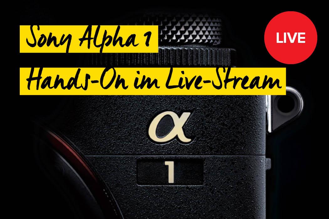 Sony Alpha 1 Live-Stream